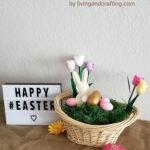 Easter Bunny Basket ft