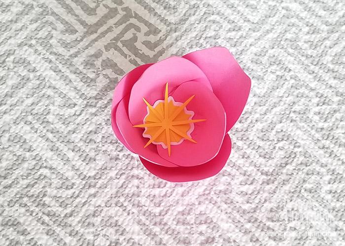 Tulip Paper Flower 19