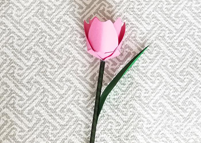 Tulip Paper Flower 29