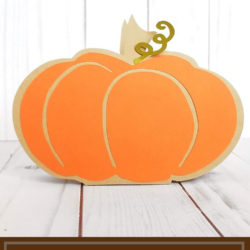 Pumpkin Favor Box ft